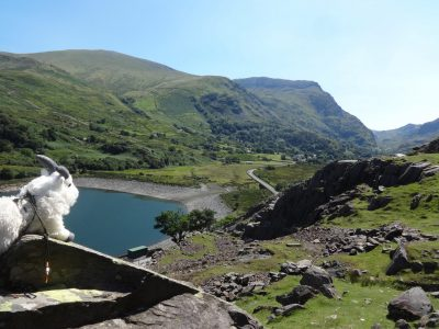 For the Greater Goat: ML Training in Sunny Snowdonia